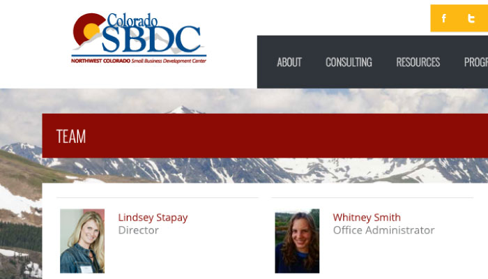 SBDC consultant digital marketing